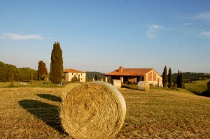Tuscan holiday villa rent ownersdirect