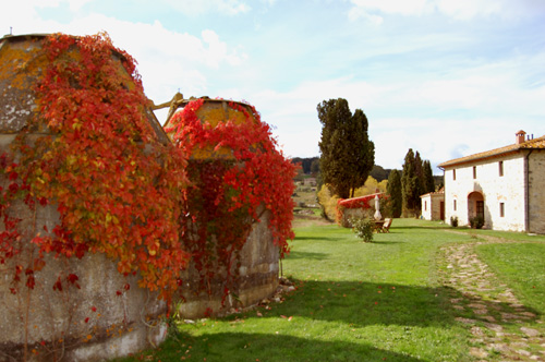 autumn in tuscan villa with ivy red leaves