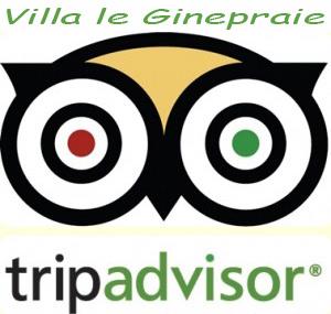 logo tripadvisor tuscany villa