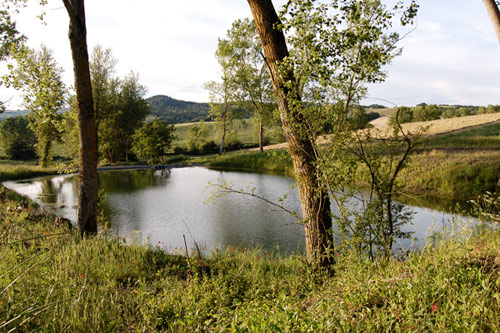 pond near the tuscan villa