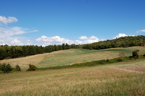 hills in tuscany