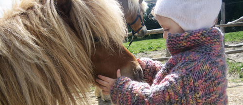 pony for children in tuscany